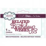 Sue Wilson Die Belated Birthday Wishes | Mini Expressions