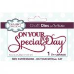 Sue Wilson Die On Your Special Day Sentiment | Mini Expressions