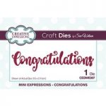 Sue Wilson Mini Expressions Congratulations Die