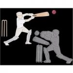 Joanna Sheen Signature Dies Cricketer